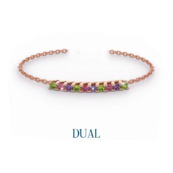 discover dual