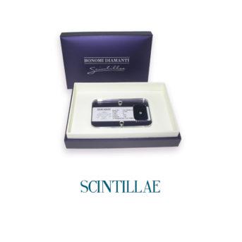 discover scintillae